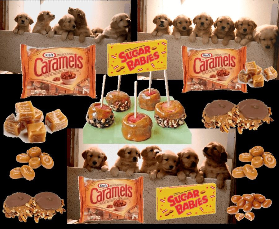 Caramel Treats Are Sooo Sweet and Desirable You Just Can't Resist!