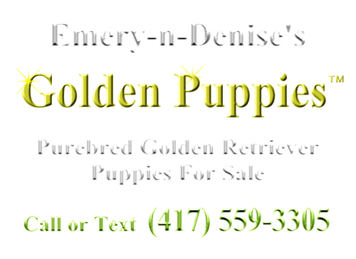 Emery-n-Denise's Golden Puppies